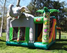 Jungle Bounce Inflatable